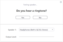 Testing speaker dialog box in Zoom.