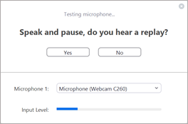Testing microphone dialog box in Zoom.