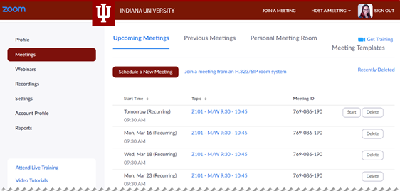 A screenshot of the Meetings view in the Zoom website, showing a list of recurring meetings.